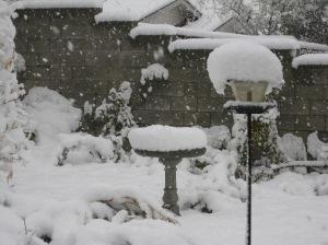 snow3-0371