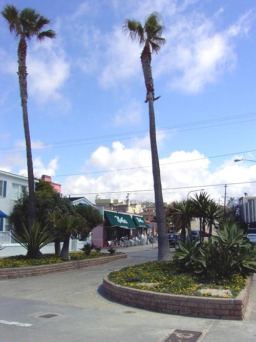 Hermosa Beach twin palms